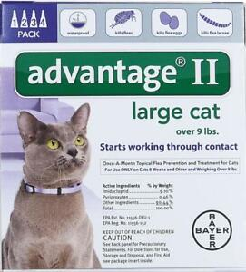 Bayer-Advantage-II-for-Large-Cats-Over-9-Lbs-4-ct-Flea-Treatment