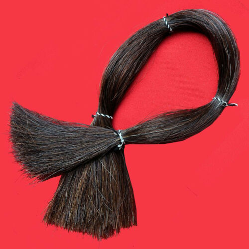 """4 oz XL Horse Hair 22-26/"""" Length Clean /& Ready to Use for Crafts,Scalplocks"""