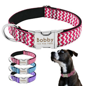 Personalised-Small-Large-Dog-ID-Collar-Laser-Engraved-Metal-Buckle-Bulldog-Boxer