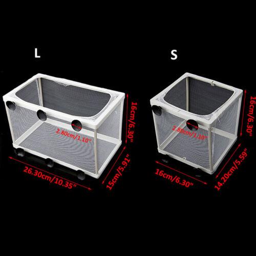 Aquarium Fish Tank Guppy Breeding Breeder Baby Fry Net Trap Box Hatchery L//S