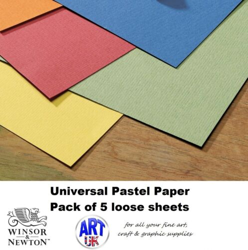 Winsor /& Newton artists universal PASTEL PAPER pack of 5 loose sheets 50 x 65cm
