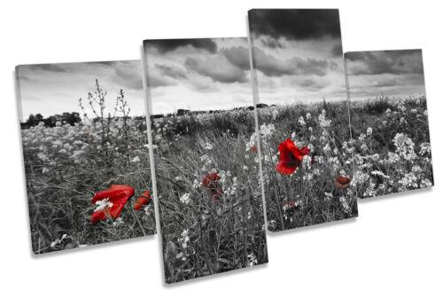 Campo de flores de amapolas rojas Lona Pared Arte Cuadro Enmarcado de múltiples