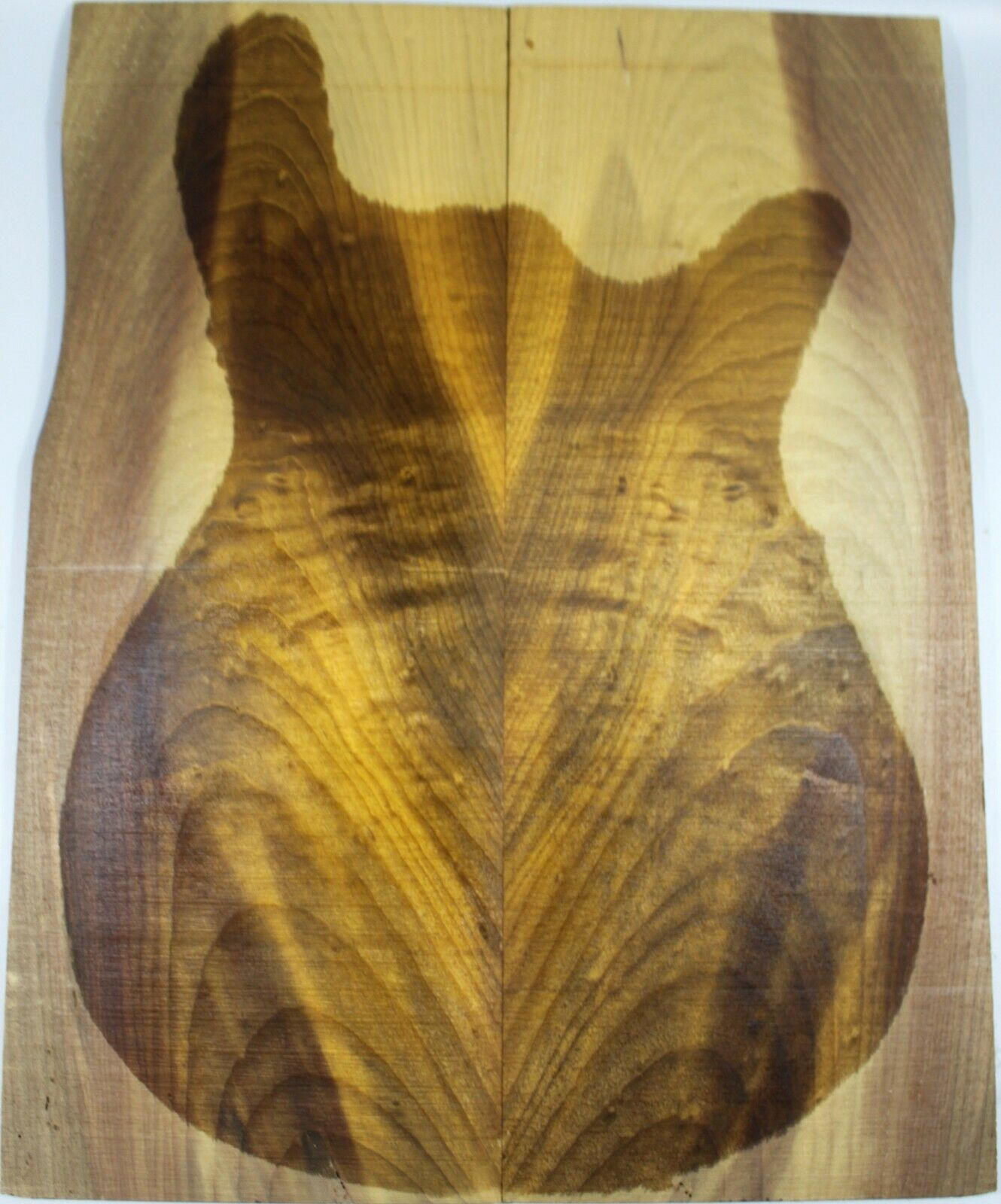 5800 Golden Phoebe Wood Bass Top Bookmatch Supply-ONE AND ONLY