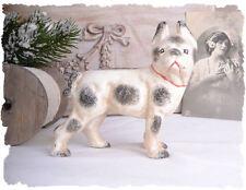 Vintage Tirelire Figure de CHIEN Rétro BOULEDOGUE FRANÇAIS chien FIGURINE