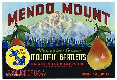 """USA Original Lake County Fruit Crate Label /""""MAGNIFICENT/"""" Pear Fruit Label"""