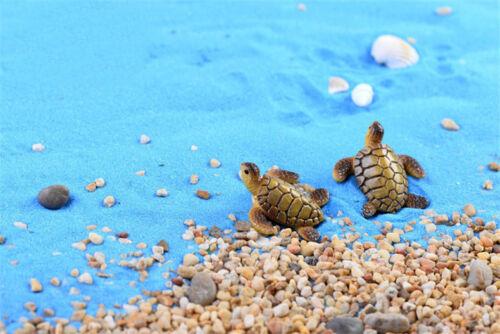 DIY 2 Pcs Turtle Miniature Dollhouse Fairy Garden Micro Landscape Aquarium Decor