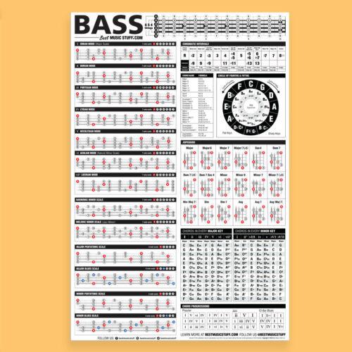 "The Essential Bass Theory Poster 24/""x36/"""