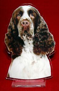 statuette-photosculptee-10x15-cm-chien-springer-anglais-4-dog-hund-perro-cane