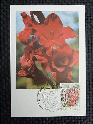Briefmarken Genossenschaft Italia Mk Italy Flowers Blumen Maximumkarte Carte Maximum Card Mc Cm C1594 Up-To-Date-Styling Maximumkarten