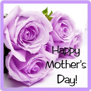 Happy Mothers Day Gift Card Insert Purple Roses Refrigerator Magnet