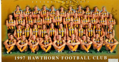 1997 Herald Sun AFL Official m Photo Hawthorn