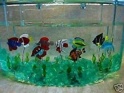 Flydende glasfisk
