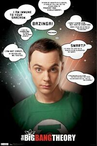 BIG-BANG-THEORY-POSTER-SHELDON-SARCASM-QUOTES-22x34-TV-Jim-Parsons-The-Bazinga