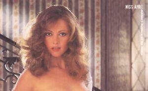 Carrie bradshaw porn pics