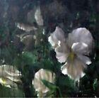 Kourouma 5051083072113 by Angele David-guillou CD