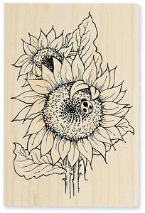 Image result for sunflower ladybug stamp