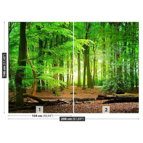Non woven Wall Mural Photo Wallpaper Poster Picture Image Spring forest