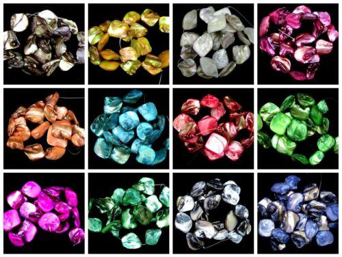Natural teñido de Shell Pepita cuentas 18 Perlas por paquete de 16 mm 25 Mm Muchos Colores Ml