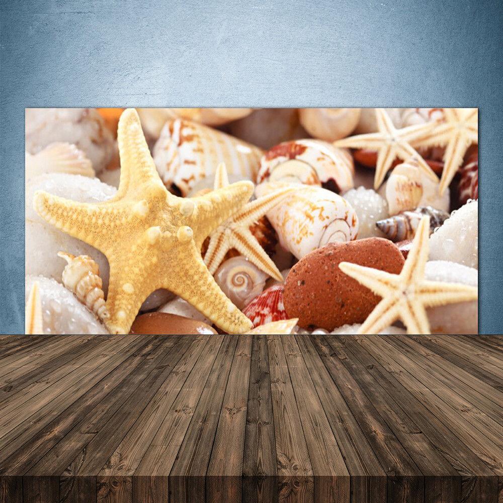 Crédence de cuisine en verre Panneau 140x70 Art Coquilles étoile De Mer