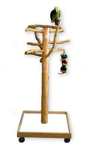Afl2 Manzanita Activity Center Parrot Tree Bird Stand Toy