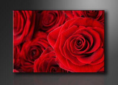 AnpassungsfäHig Bilder Leinwand -rosen Auf Rahmen Wandbild Visario Bild 5058