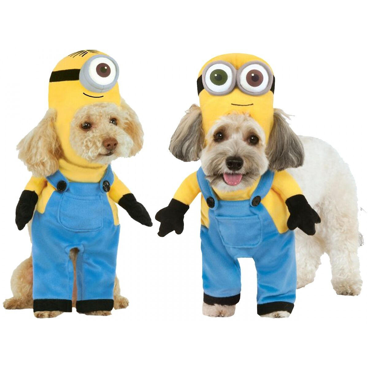 Despicable Me - Minion Costume Pet Halloween Fancy Dress