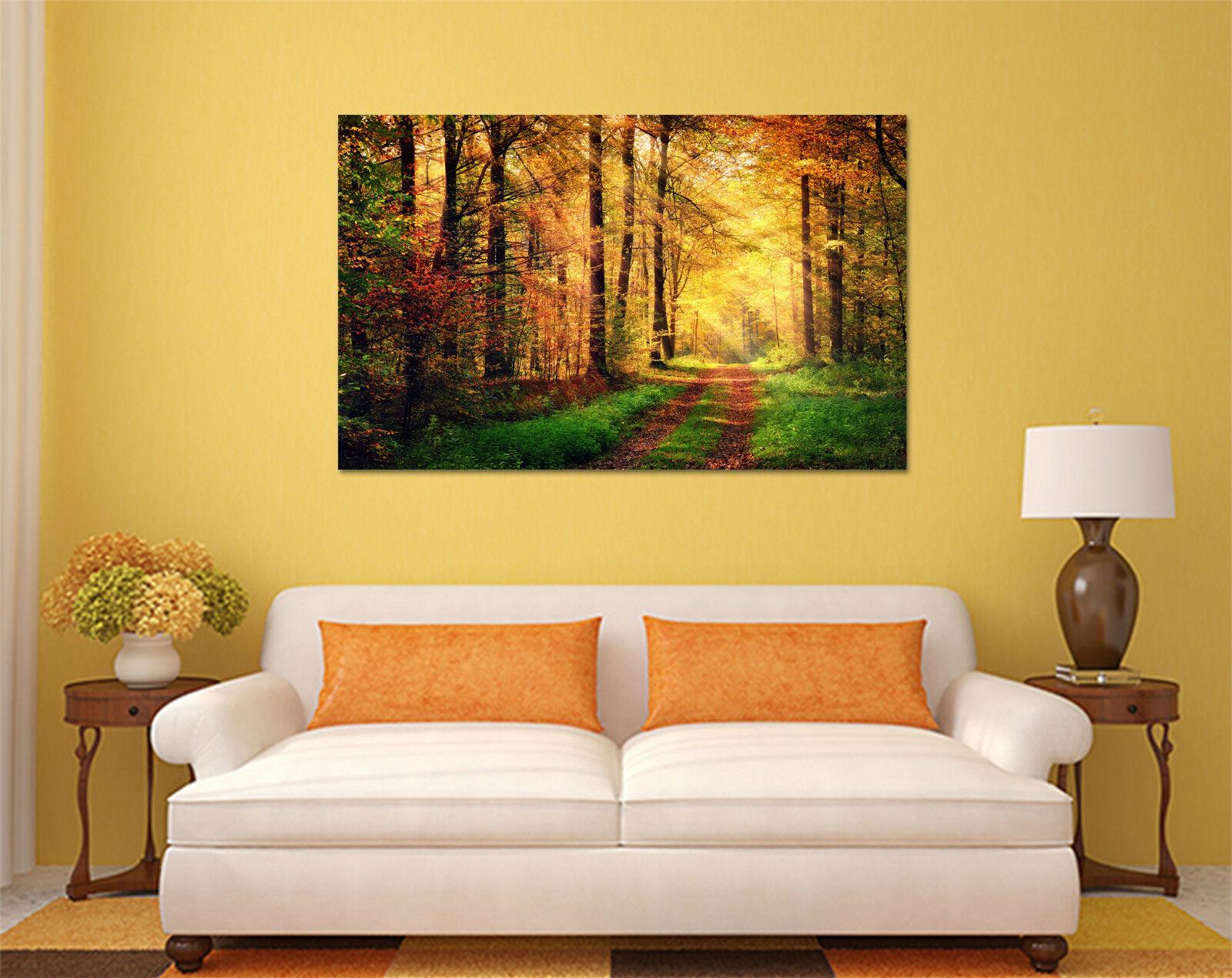 3D Der Wald der Sonne 574 Fototapeten Wandbild BildTapete AJSTORE DE Lemon