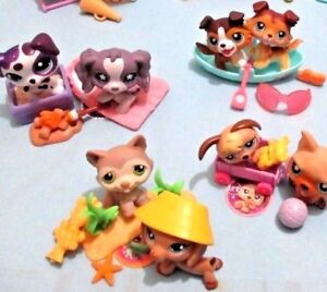 Littlest-Pet-Shop-Lot-5-Random-Pcs-2-Puppy-Dogs-and-3-Accessories-Surprise-Gift