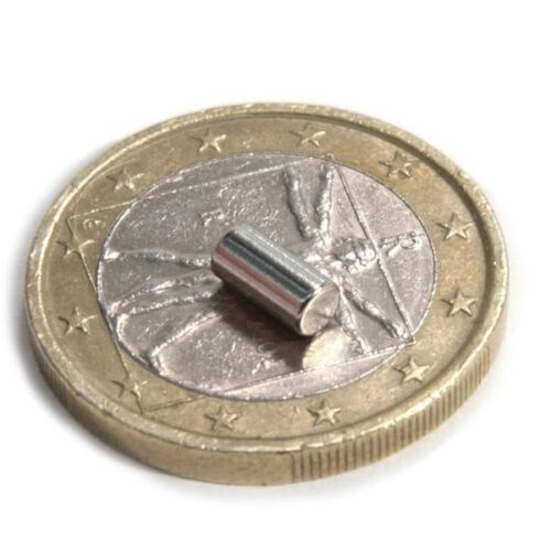 20 x Stabmagnet Magnet-Stab Ø 2 x 4mm Neodym N45 Haftkraft 280g Nickel NdFeB
