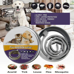 Pulci E Non Solo Calendario.Dettagli Su Collare Naturale Delle Pulci Per Cani Protezione Delle Pulci E Delle Zecche Fi