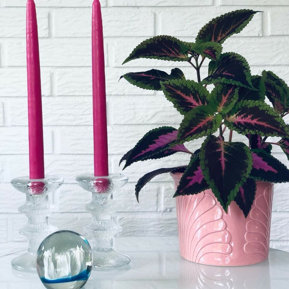 Glas, Brevpresser, lysestager og urtepotte