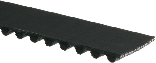 Engine Timing Belt-PowerGrip Premium OE Timing Belt Gates T204