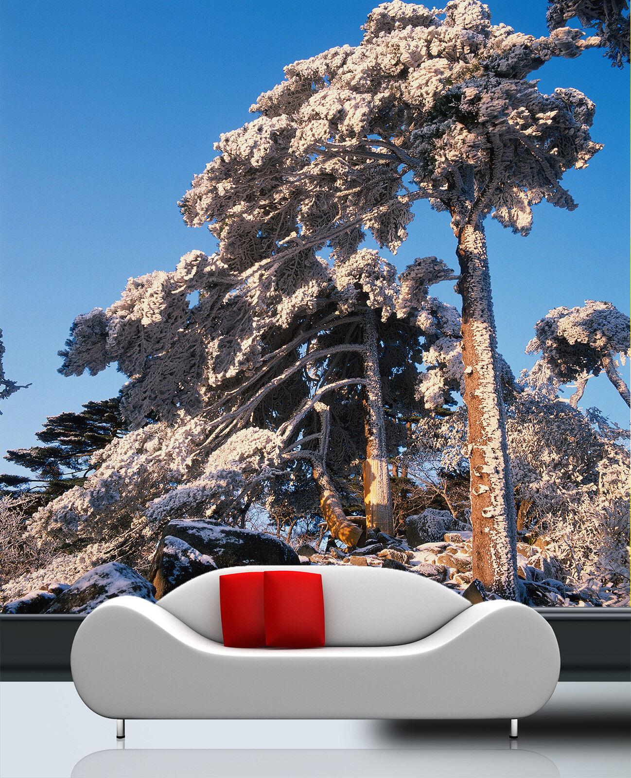 3D 3D 3D Schnee Kiefern Stein 854 Tapete Wandgemälde Tapete Tapeten Bild Familie DE   Eleganter Stil  7656c8