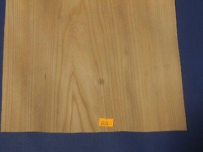 Outilleurs//orme placage marquetterie de Bricolage Modélisme 2033