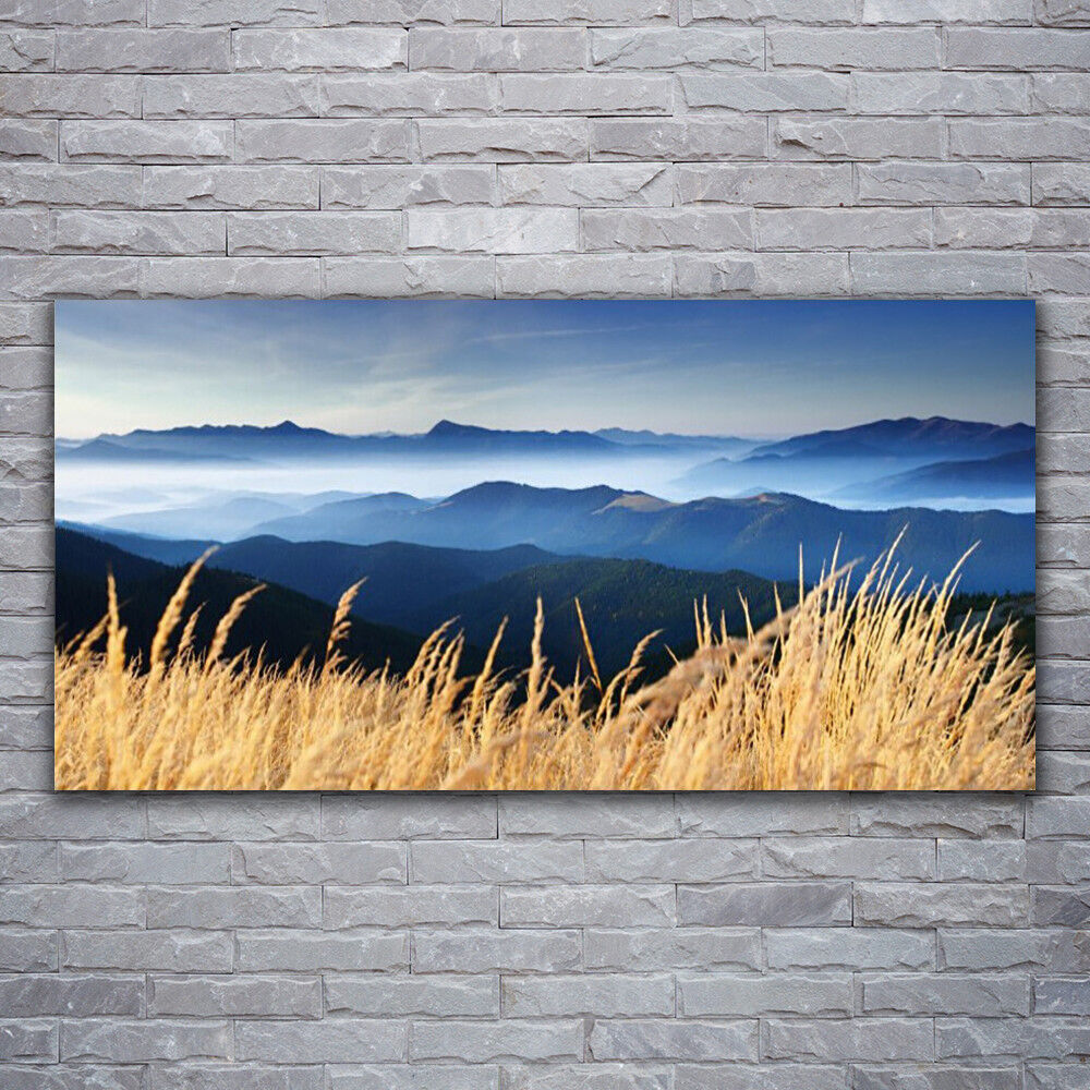 Canvas print Wall art on 120x60 Image Picture Field Landscape