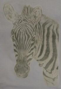 Zebra-T-Shirt-Children-and-Adult-Sizes-Unique-Design