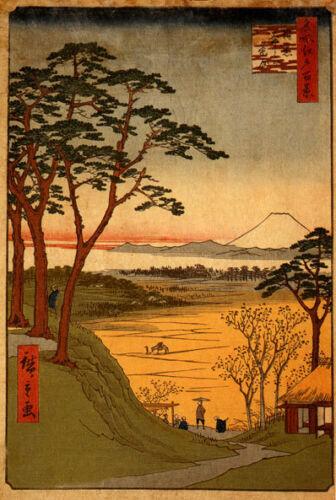 Old Man's Teahouse 15x22 Japanese Print Hiroshige Asian Art Ltd. Edition Japan