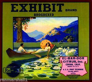 Covina Deluxe #1 Orange Citrus Fruit Crate Label Art Print