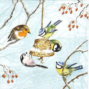 Papel 4x Servilletas Para Decoupage Decopatch Craft winterbirds