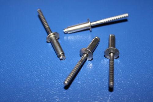 Form A Flachkopf-V2A Blindnieten D7337-3,2x6mm Edelstahl A2//A2 50 St