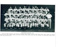 1949 WASHINGTON SENATORS 8X10 TEAM PHOTO  BASEBALL HOF MLB USA