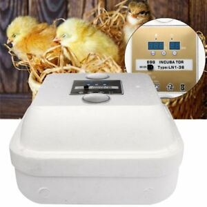 36-Egg-utomatic-Digital-Incubator-Chicken-Poultry-Hatcher-Temperature