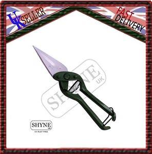 Polished Sheep Hoof Trimming Scissors Foot Rot Shears Serrated// Sharp Blades