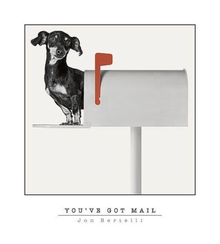 """Dog Print /""""You've Got Mail/"""" by Jon Bertelli Dachshund Dog 18x20"""
