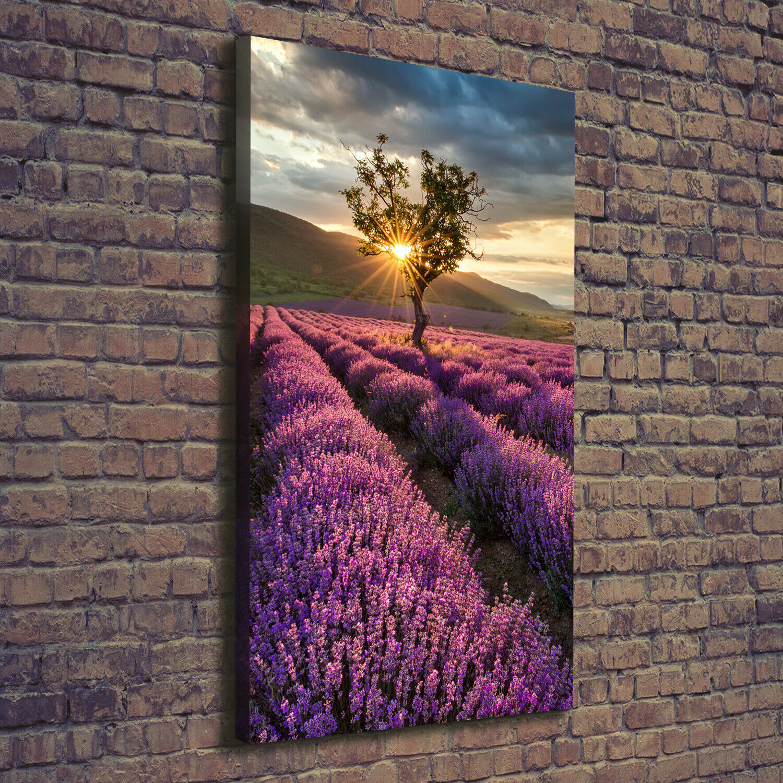 Leinwand-Bild Kunstdruck Hochformat 70x140 Bilder Lavendelfeld