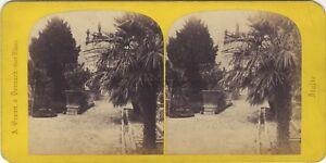 Lac Maggiore Isola Bella Jardins Foto Braun Stereo Vintage Albumina Ca 1865