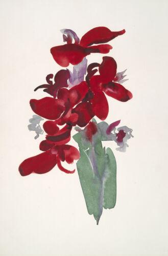 Georgia O/'Keeffe Reproduction Red Canna Fine Art Print