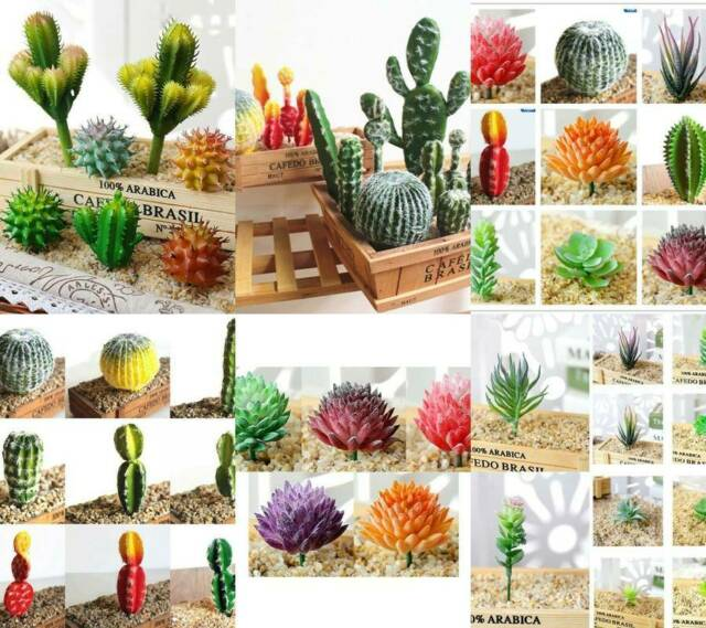 Garden Artificial Plant Window Succulent Cactus Flower Simulated Living Room