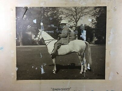 "Asian Antiques C.1900 ""snowdrift"" Polo Horse Sold To Maharaja Of Patiala Large Mounted Photo Photographic Images"