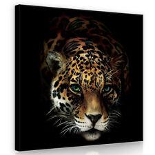 CANVAS Wandbild Leinwandbild Bild Tier Augen Katze Natur Gepard Tiger 3FX10148O5